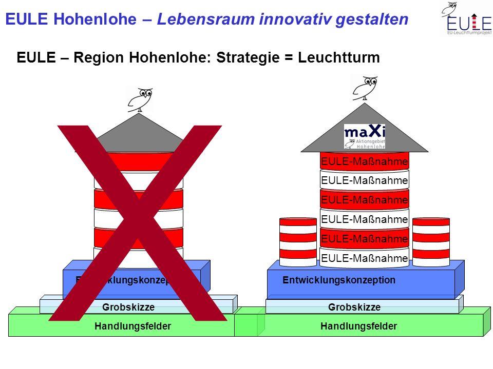 EULE Hohenlohe – Lebensraum innovativ gestalten EULE – Region Hohenlohe: Strategie = Leuchtturm Handlungsfelder Grobskizze Entwicklungskonzeption X Ha