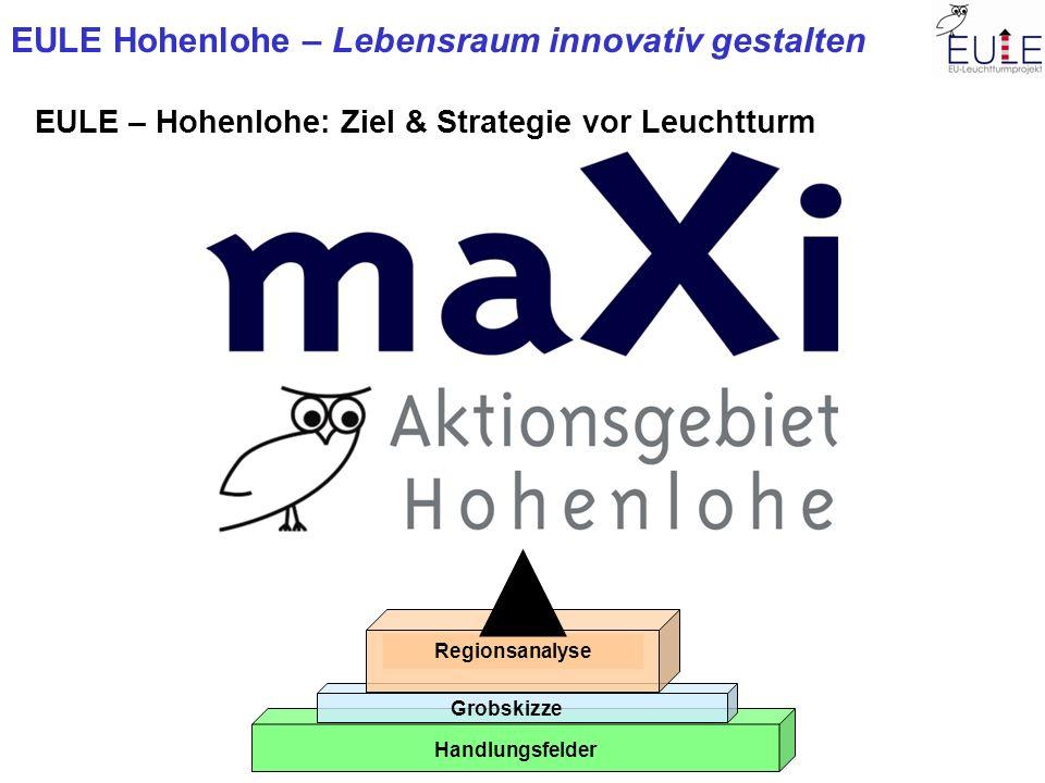 EULE Hohenlohe – Lebensraum innovativ gestalten EULE – Hohenlohe: Ziel & Strategie vor Leuchtturm Handlungsfelder Grobskizze Regionsanalyse