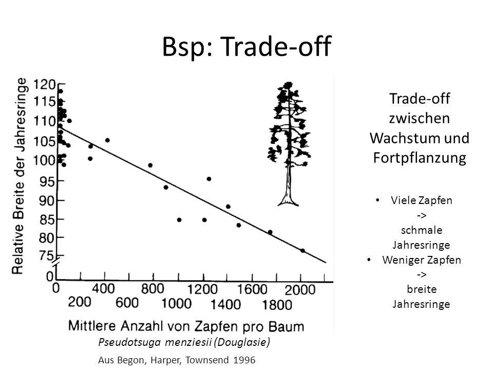 Bsp: Trade-off Pseudotsuga menziesii (Douglasie) Aus Begon, Harper, Townsend 1996 Trade-off zwischen Wachstum und Fortpflanzung Viele Zapfen -> schmale Jahresringe Weniger Zapfen -> breite Jahresringe