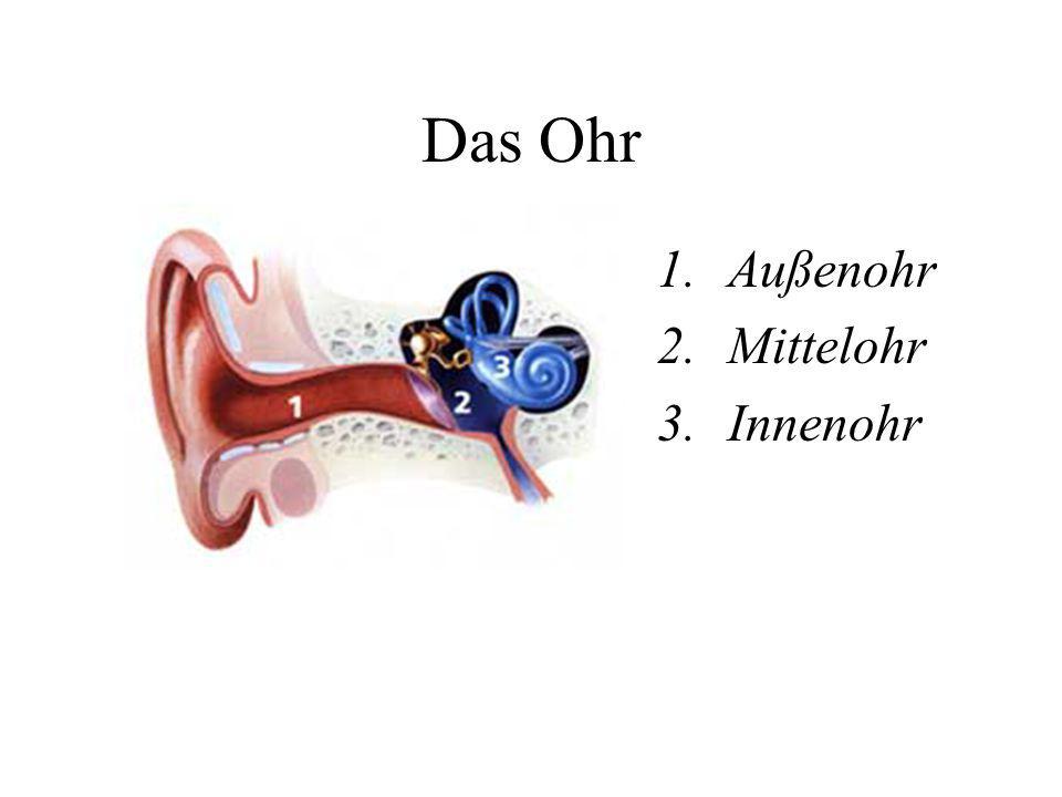 Das Ohr 1.Außenohr 2.Mittelohr 3.Innenohr