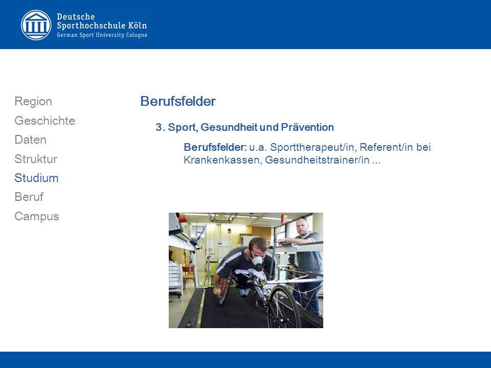 Region Geschichte Daten Struktur Studium Beruf Campus Berufsfelder 3.
