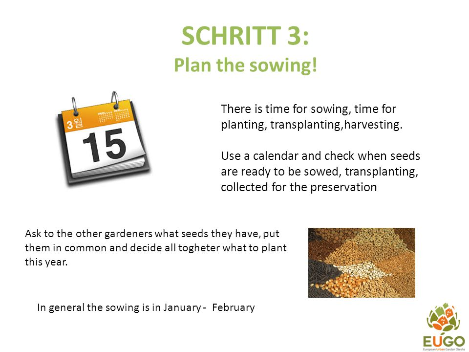 SCHRITT 3: Plan the sowing! There is time for sowing, time for planting, transplanting,harvesting. Use a calendar and check when seeds are ready to be