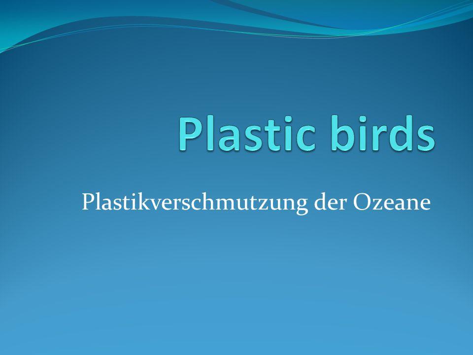 Plastikverschmutzung der Ozeane