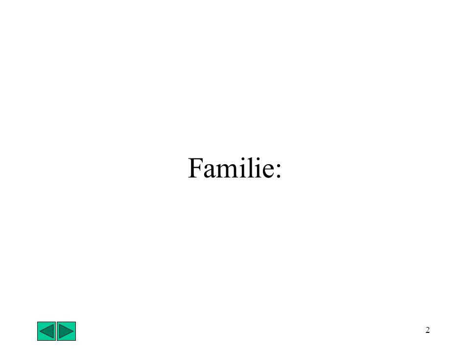 1 Gruppe Formelle Gruppe (z.B. Schule): Schüler sind etwa gleich alt Gemeinsames Klassenzimmer Gemeinsames Ziel: Abschluss Regeln (Hausordnung) Pflich