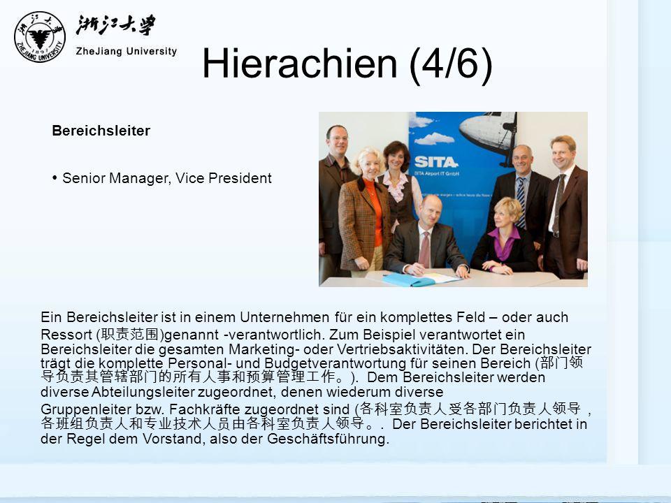 Hierachien (4/6) Bereichsleiter Senior Manager, Vice President Ein Bereichsleiter ist in einem Unternehmen für ein komplettes Feld – oder auch Ressort ( )genannt -verantwortlich.