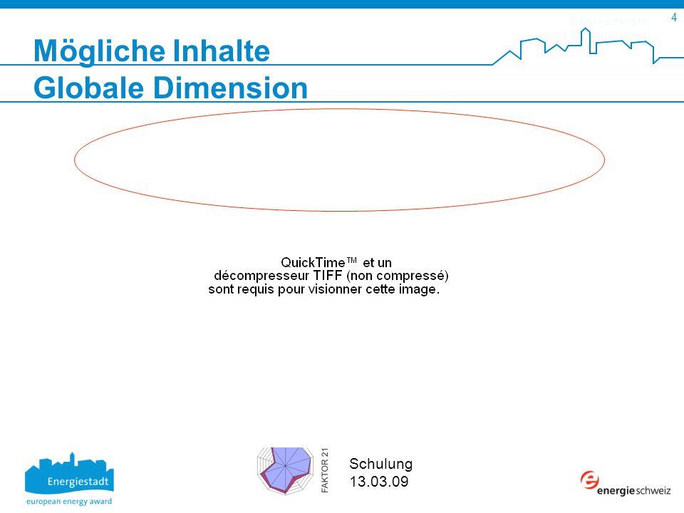 SuisseEnergie pour les communes 5 Schulung 13.03.09 FAKTOR 21 Kurs 30.01.09 Mögliche Inhalte Strategie des Bundesrates Leitlinien und Aktionsplan 2008-2011