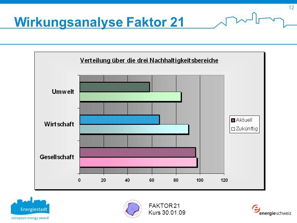 SuisseEnergie pour les communes 12 FAKTOR 21 Kurs 30.01.09 Wirkungsanalyse Faktor 21