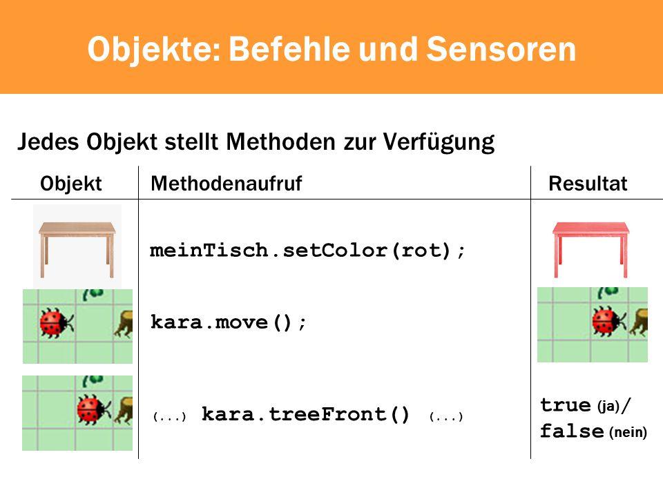 Objekte: Befehle und Sensoren Jedes Objekt stellt Methoden zur Verfügung meinTisch.setColor(rot); ObjektMethodenaufrufResultat kara.move(); (...) kara