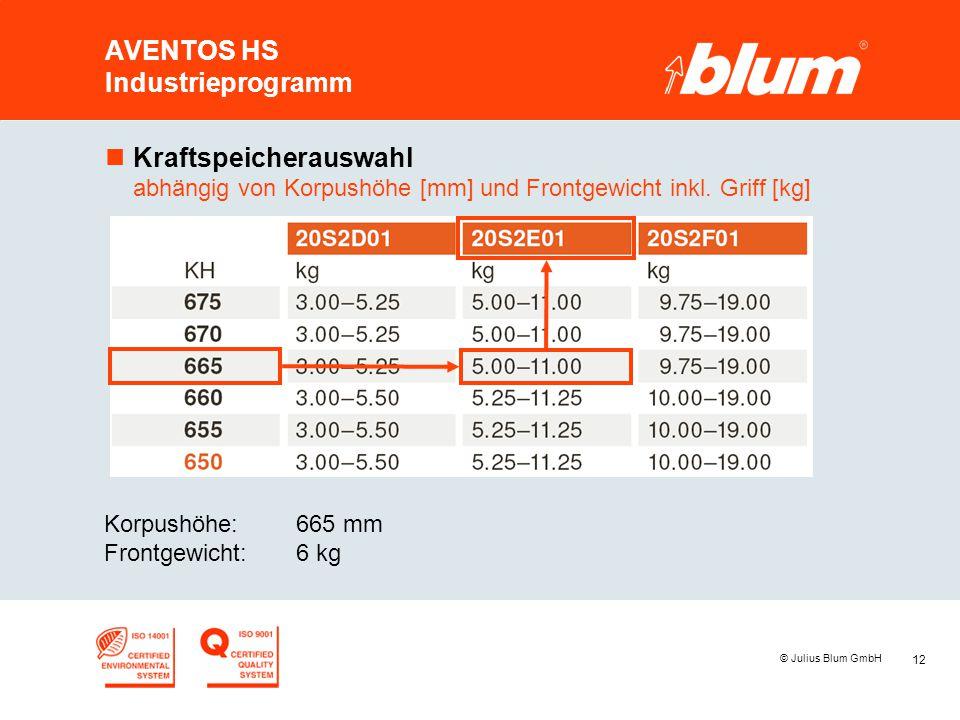 12 © Julius Blum GmbH AVENTOS HS Industrieprogramm nKraftspeicherauswahl abhängig von Korpushöhe [mm] und Frontgewicht inkl. Griff [kg] Korpushöhe:665