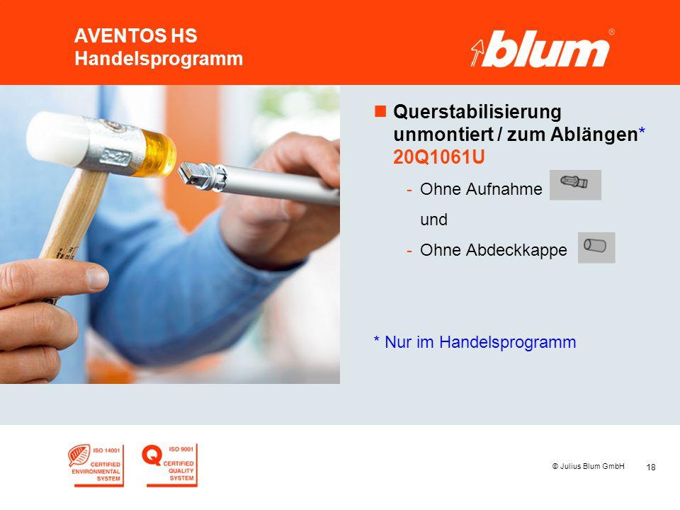 18 © Julius Blum GmbH AVENTOS HS Handelsprogramm nQuerstabilisierung unmontiert / zum Ablängen* 20Q1061U -Ohne Aufnahme und -Ohne Abdeckkappe * Nur im