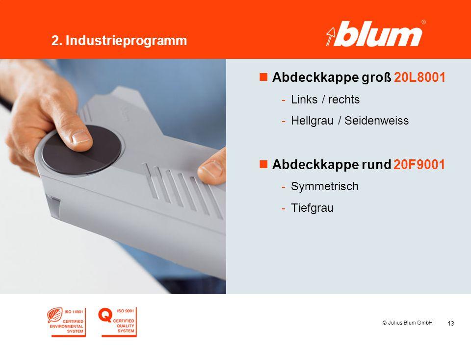 13 © Julius Blum GmbH 2. Industrieprogramm nAbdeckkappe groß 20L8001 -Links / rechts -Hellgrau / Seidenweiss nAbdeckkappe rund 20F9001 -Symmetrisch -T