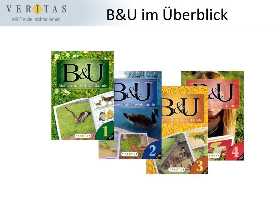 B&U im Überblick