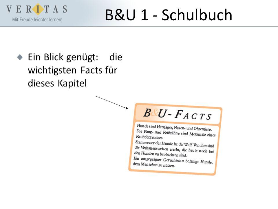 B&U 1 - Schulbuch Ein Blick genügt: die wichtigsten Facts für dieses Kapitel