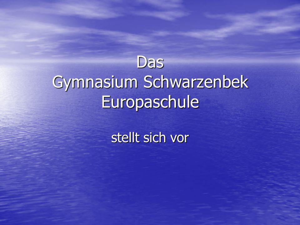Das Gymnasium Schwarzenbek Europaschule stellt sich vor