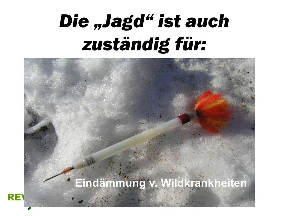 Die Jagd ist auch zuständig für: Eindämmung v. Wildkrankheiten