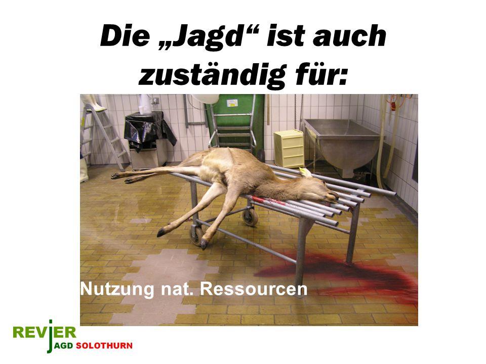 Die Jagd ist auch zuständig für: Nutzung nat. Ressourcen