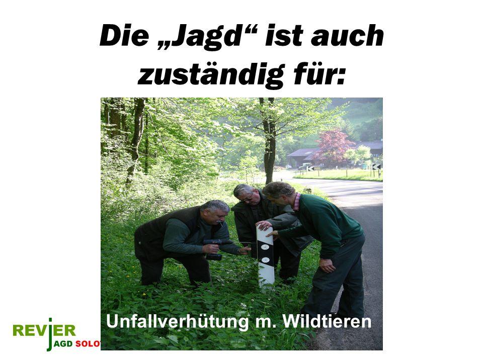 Die Jagd ist auch zuständig für: Unfallverhütung m. Wildtieren