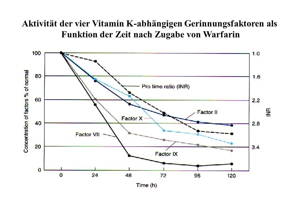 Melagatran Warfarin