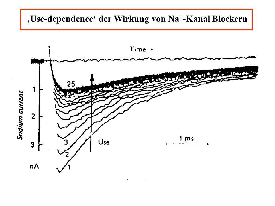 Use-dependence der Wirkung von Na + -Kanal Blockern