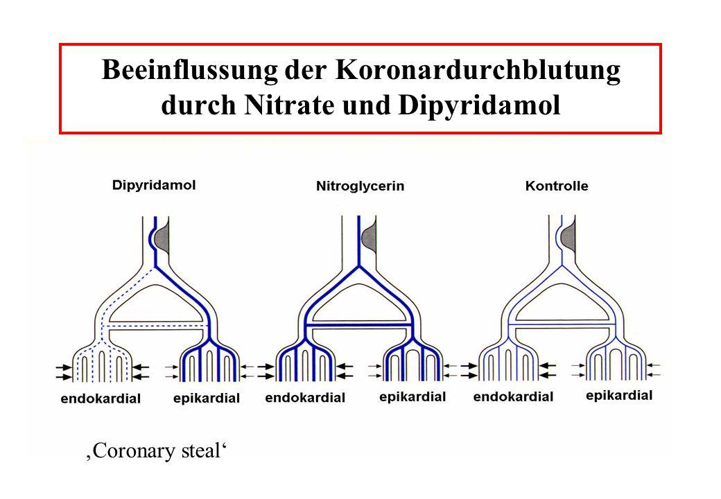 Beeinflussung der Koronardurchblutung durch Nitrate und Dipyridamol Coronary steal