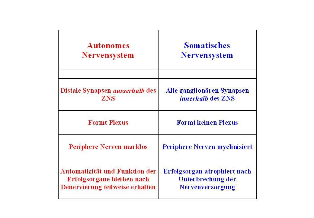 Prinzipien der Signaltransduktion 1