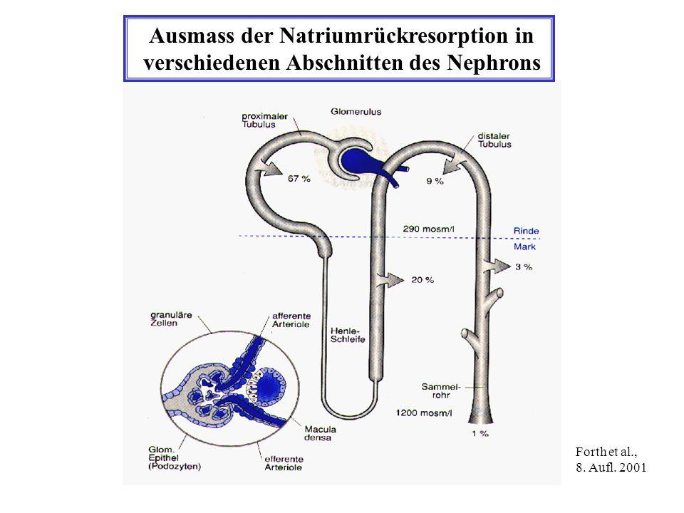 Ausmass der Natriumrückresorption in verschiedenen Abschnitten des Nephrons Forth et al., 8. Aufl. 2001