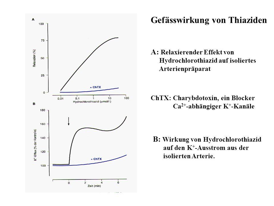 Gefässwirkung von Thiaziden A: Relaxierender Effekt von Hydrochlorothiazid auf isoliertes Arterienpräparat B: Wirkung von Hydrochlorothiazid auf den K