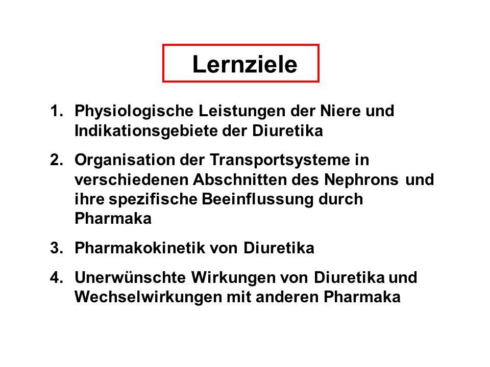 Lernziele 1.Physiologische Leistungen der Niere und Indikationsgebiete der Diuretika 2.Organisation der Transportsysteme in verschiedenen Abschnitten