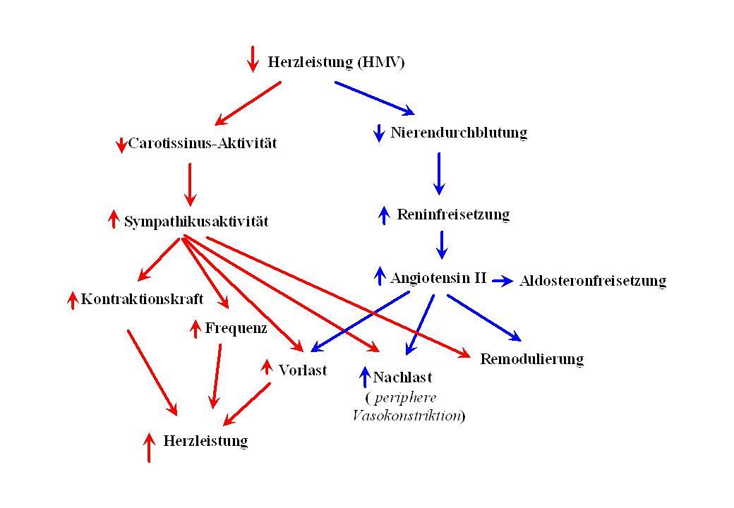 Ursachen der Linksherzinsuffizienz Erhöhte Druckbelastung (z.B.