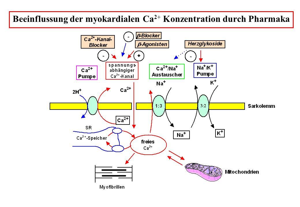 Chemische Struktur von Digitalisglykosiden
