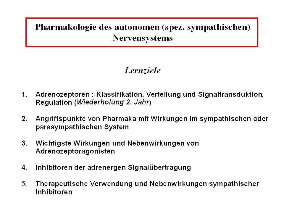 Nebenwirkungen nur von -adrenergen Inhibitoren Bradykardie, negativ inotroper Effekt Hypoglykämie Bronchokonstriktion ( 2-Blocker) kalte Extremitäten Alpträume