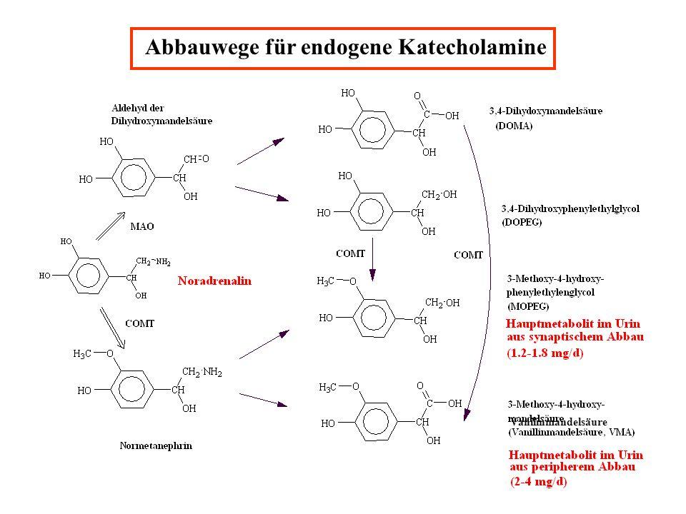 Abbauwege für endogene Katecholamine Vanilinmandelsäure