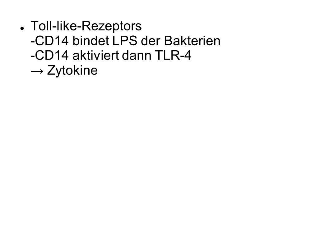 Toll-like-Rezeptors -CD14 bindet LPS der Bakterien -CD14 aktiviert dann TLR-4 Zytokine