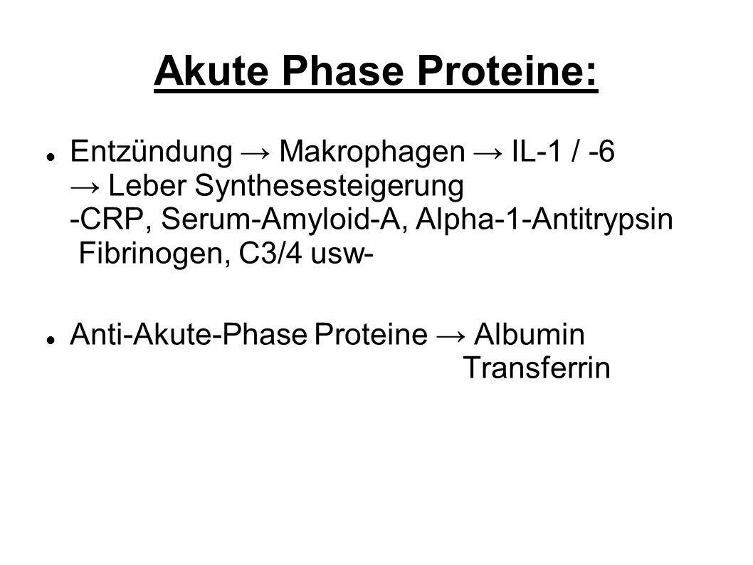 Akute Phase Proteine: Entzündung Makrophagen IL-1 / -6 Leber Synthesesteigerung -CRP, Serum-Amyloid-A, Alpha-1-Antitrypsin Fibrinogen, C3/4 usw- Anti-Akute-Phase Proteine Albumin Transferrin