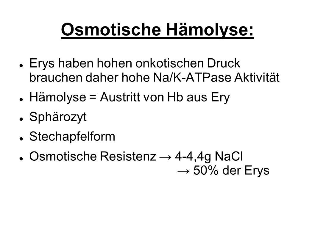 Osmotische Hämolyse: Erys haben hohen onkotischen Druck brauchen daher hohe Na/K-ATPase Aktivität Hämolyse = Austritt von Hb aus Ery Sphärozyt Stechapfelform Osmotische Resistenz 4-4,4g NaCl 50% der Erys
