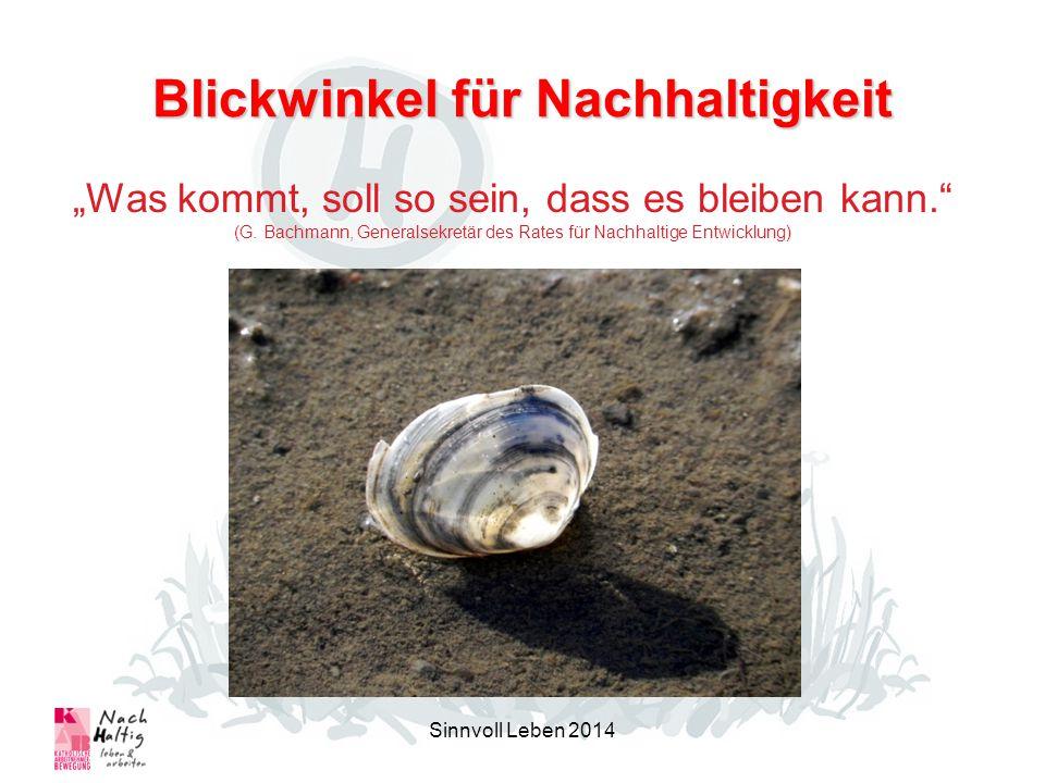 Blickwinkel für Nachhaltigkeit Sinnvoll Leben 2014 Was kommt, soll so sein, dass es bleiben kann. (G. Bachmann, Generalsekretär des Rates für Nachhalt