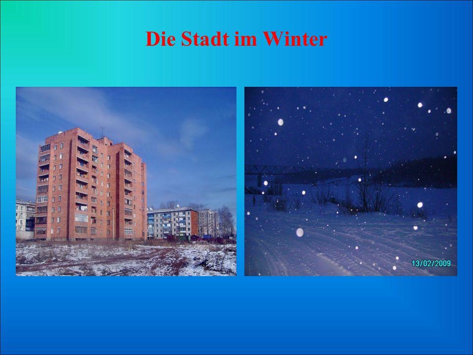 Die Stadt im Winter