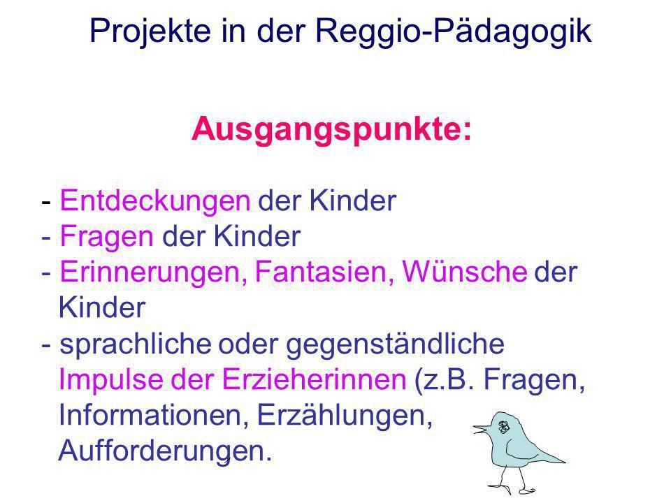 Projekte in der Reggio-Pädagogik Ausgangspunkte: - Entdeckungen der Kinder - Fragen der Kinder - Erinnerungen, Fantasien, Wünsche der Kinder - sprachl