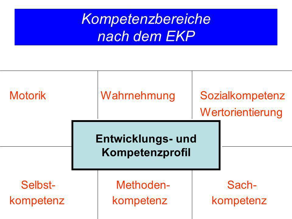 Kompetenzbereiche nach dem EKP Motorik Wahrnehmung Sozialkompetenz Wertorientierung Selbst- Methoden- Sach- kompetenz kompetenz kompetenz Entwicklungs