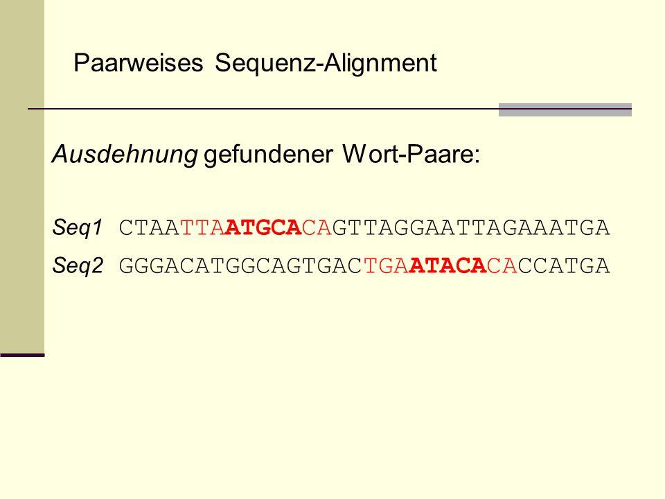 Paarweises Sequenz-Alignment Ausdehnung gefundener Wort-Paare: Seq1 CTAATTAATGCACAGTTAGGAATTAGAAATGA Seq2 GGGACATGGCAGTGACTGAATACACACCATGA