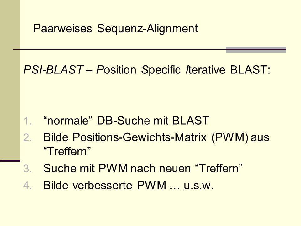 Paarweises Sequenz-Alignment PSI-BLAST – Position Specific Iterative BLAST: 1. normale DB-Suche mit BLAST 2. Bilde Positions-Gewichts-Matrix (PWM) aus