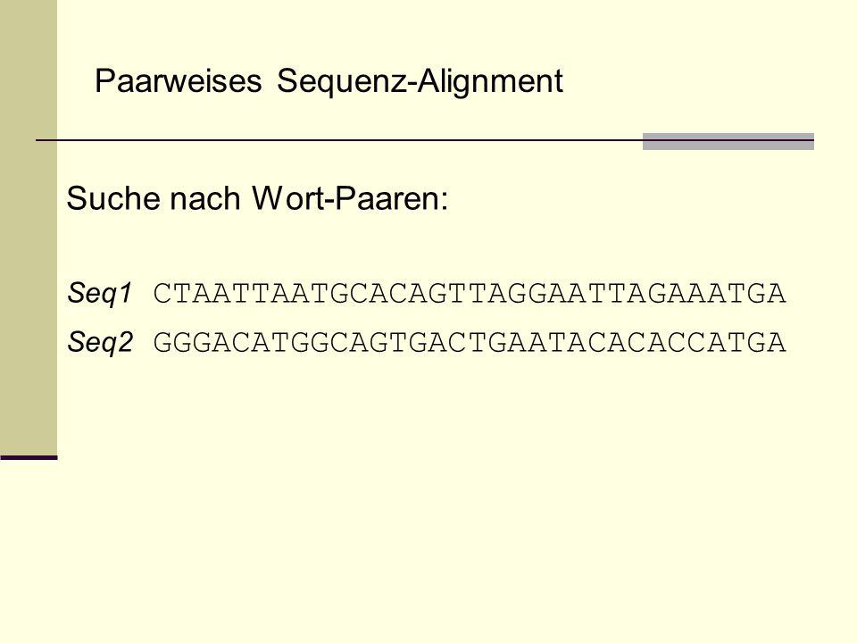 Paarweises Sequenz-Alignment Suche nach Wort-Paaren: Seq1 CTAATTAATGCACAGTTAGGAATTAGAAATGA Seq2 GGGACATGGCAGTGACTGAATACACACCATGA