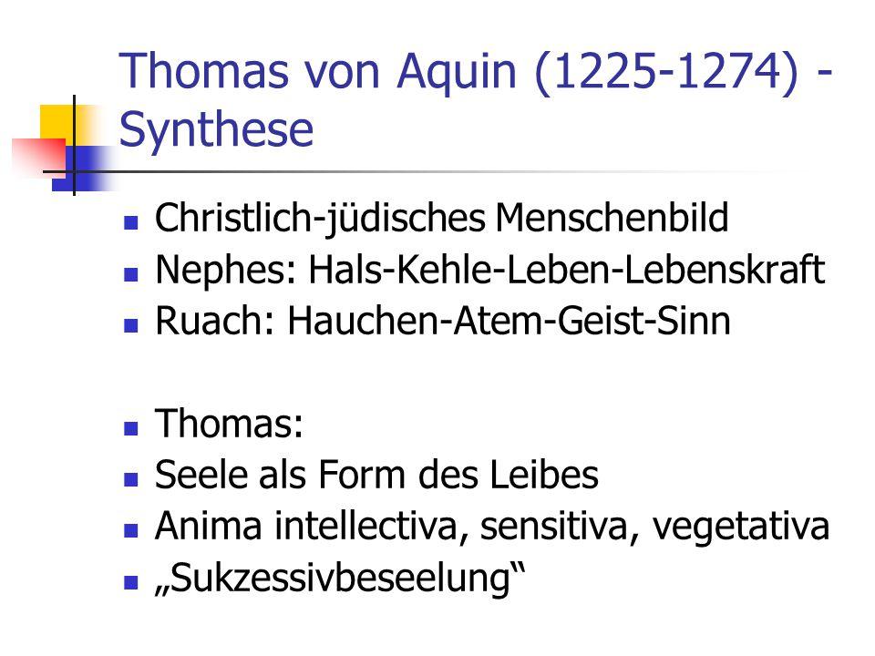 Thomas von Aquin (1225-1274) - Synthese Christlich-jüdisches Menschenbild Nephes: Hals-Kehle-Leben-Lebenskraft Ruach: Hauchen-Atem-Geist-Sinn Thomas: