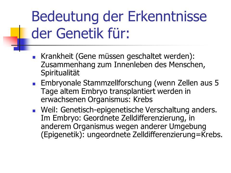 Bedeutung der Erkenntnisse der Genetik für: Krankheit (Gene müssen geschaltet werden): Zusammenhang zum Innenleben des Menschen, Spiritualität Embryon