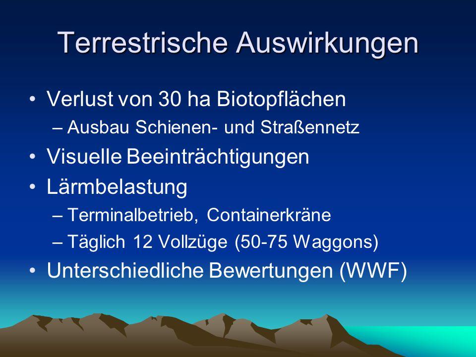 Terrestrische Auswirkungen Verlust von 30 ha Biotopflächen –Ausbau Schienen- und Straßennetz Visuelle Beeinträchtigungen Lärmbelastung –Terminalbetrieb, Containerkräne –Täglich 12 Vollzüge (50-75 Waggons) Unterschiedliche Bewertungen (WWF)