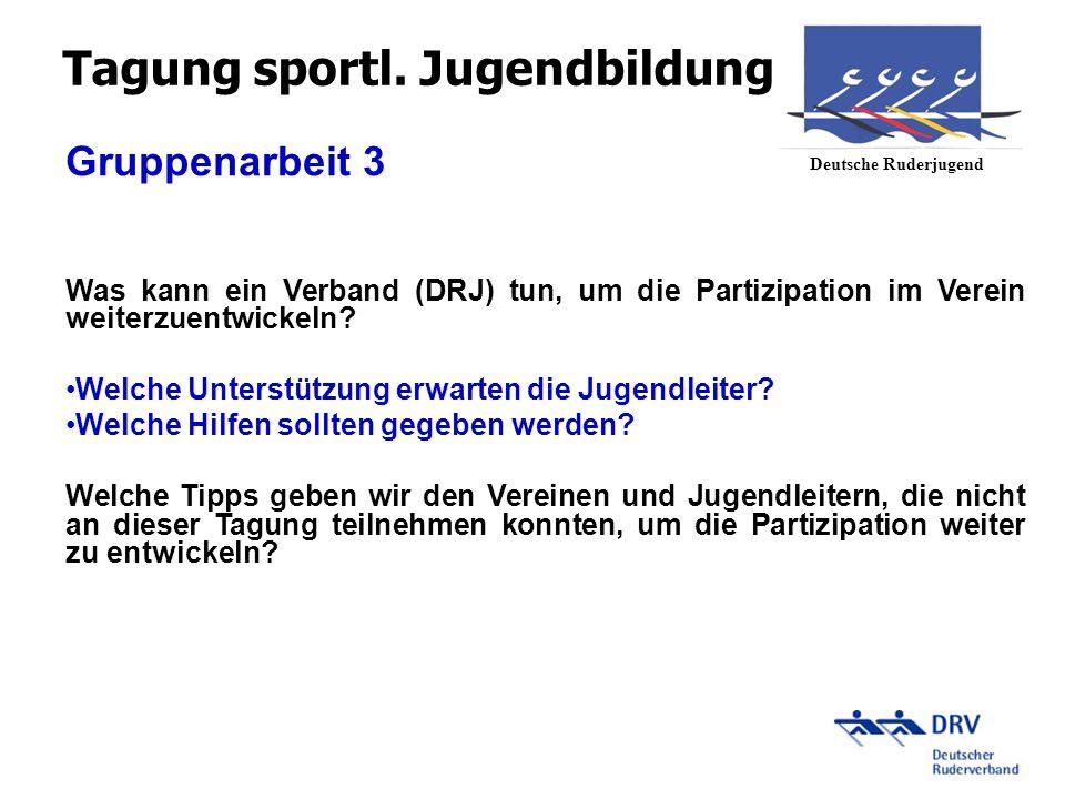 Gruppenarbeit 3 Was kann ein Verband (DRJ) tun, um die Partizipation im Verein weiterzuentwickeln? Welche Unterstützung erwarten die Jugendleiter? Wel