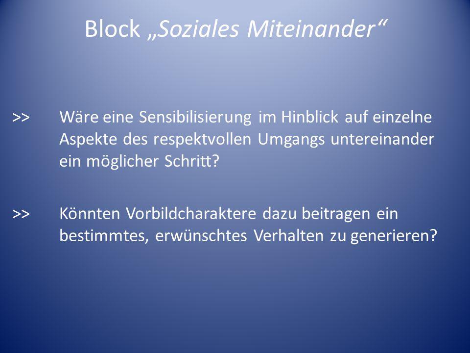 Block Soziales Miteinander >> Wäre eine Sensibilisierung im Hinblick auf einzelne Aspekte des respektvollen Umgangs untereinander ein möglicher Schrit