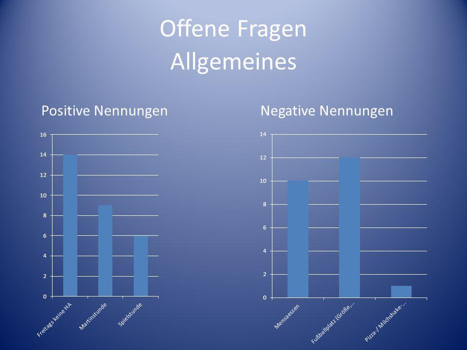 Offene Fragen Positive NennungenNegative Nennungen Allgemeines