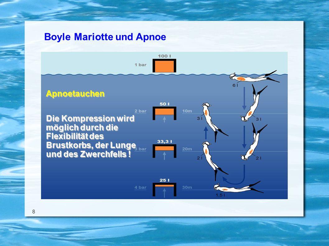 Boyle Mariotte und Apnoe 8 Apnoetauchen Die Kompression wird möglich durch die Flexibilität des Brustkorbs, der Lunge und des Zwerchfells !