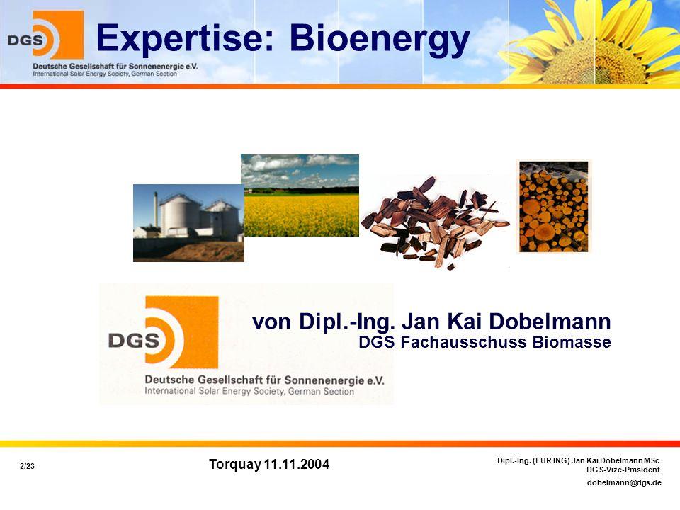 dobelmann@dgs.de 2/23 Dipl.-Ing. (EUR ING) Jan Kai Dobelmann MSc DGS-Vize-Präsident Torquay 11.11.2004 von Dipl.-Ing. Jan Kai Dobelmann DGS Fachaussch